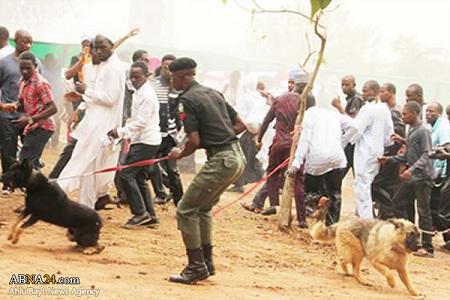 استفاده پلیس نیجریه از سگ برای ترساندن زنان شیعه