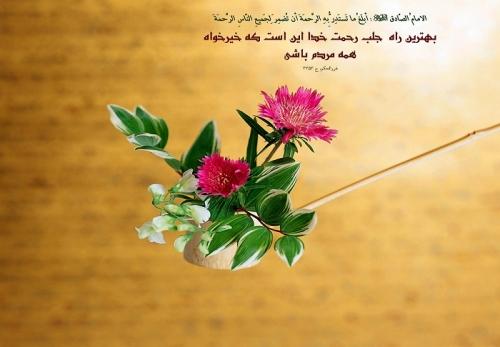 इमाम रज़ा (अ.) की मार्गदर्शक हदीसें