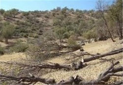 خشکسالیهای امسال حاشیه دریای خزر در شمال ایران را نیز تحت تاثیر قرار داده است