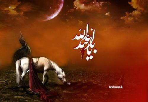 میرا یہ قیام اصلاح امت کے لئے ہے۔امام حسینؑ