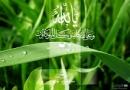 ڈاؤنلوڈاورمعرفی کتاب،فکری مسائل کا اسلامی حل،مصنف شیخ الاسلام ڈاکٹرمحمدطاهرالقادری،ناشر منہاج القرآن پبلیکیشنز لاهور