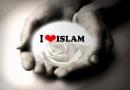 ڈاؤنلوڈاورمعرفی کتاب،اجتماعی تحریکی زندگی،مصنف شیخ الاسلام ڈاکٹرمحمدطاهرالقادری،ناشر منہاج القرآن پبلیکیشنز لاهور