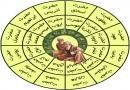 ڈاؤنلوڈاورمعرفی کتاب، مقصد بعثت انبیاء علیہم السلام،مصنف شیخ الاسلام ڈاکٹرمحمدطاهرالقادری،ناشر منہاج القرآن پبلیکیشنز لاهور