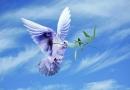 ڈاؤنلوڈاورمعرفی کتاب،تنقید - کارنامے - تاثرات،مصنف شیخ الاسلام ڈاکٹرمحمدطاهرالقادری،ناشر منہاج القرآن پبلیکیشنز لاهور