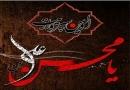 ویژه نامه شهادت حضرت محسن علیه السلام