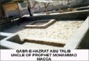 আবু তালিব, আব্দুল মুত্তালিব, ওয়াহাবি, আলী, abu talib, abdul muttalib, wahabi,