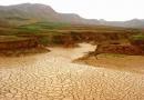 خشکسالی مرگبار