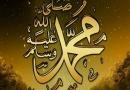 ڈاؤنلوڈاورمعرفی کتاب،سیرۃ الرسول کی اقتصادی اہمیت،مصنف شیخ الاسلام ڈاکٹرمحمدطاهرالقادری،ناشر منہاج القرآن پبلیکیشنز لاهور