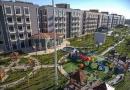 karbala city