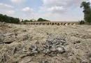 از 30 سال پیش در کتابهایم بحث غارت آب، نشست زمین و شوری چاهها را هشداد داده ام که هنوز هم موجود است اما کسی به آنها توجهی نکرد.