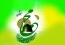 Hazrat mohammad, যুদ্ধ, হজরত আলী, আবু সুফিয়ান, হিন্দা, বদরের যুদ্ধ, হজরত মোহাম্মাদ, hazrat ali, bodor,