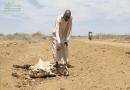 جریانات مربوط به دادگاه برای مطرح نمودن مبحث خشکسالی