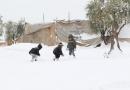 برف حلب را در بر گرفت + عکس