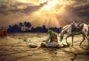 شعر در وصف حضرت عباس علیه السلام : چشم ها غرق تماشا، که نیامد عباس