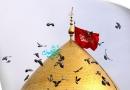 دانلود زیارت حضرت زینب و حضرت عباس و حضرت رقیه و حضرت معصومه سلام الله علیهم