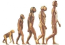 بررسی وجود نسناس در تاریخ