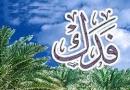 با توجه به عدم بازگرداندن فدک توسط حضرت علی (ع)، ایشان چگونه می توانسته از حقوق جامعه دفاع کند؟