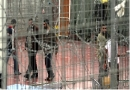 Palestinian, detainees, Israel, prisons, hunger strike