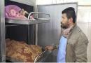 Palestine, Israel, Gaza, Egypt, airstrike, casualties