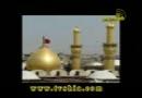 روضه حاج محمود کریمی در روز عاشورا / علی اکبر علیه السلام