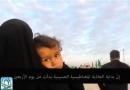 جاذبه مغناطیس حسینی در روز اربعین