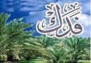 جلسه چهاردم فدک و حضرت زهرا سلام الله علیها