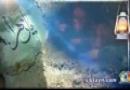 حاج عبدالرضا هلالی - فاطمه (س) با رفتنت آرزوهامو خاك نكن - فاطميه 1392